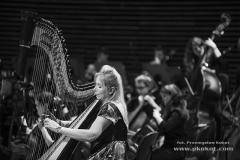 koncert_2015-4
