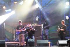 woodstock-20120113